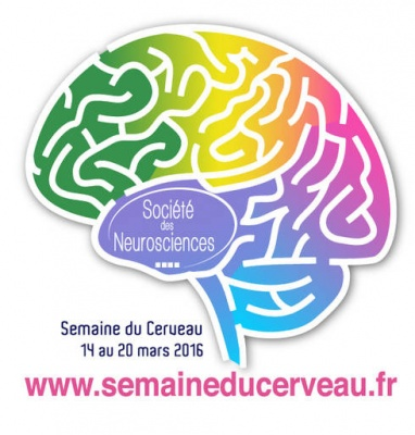 EN PANNE D'INNOVATION ? Ou comment le cerveau innove. - Bar des sciences 2016 - Montbéliard